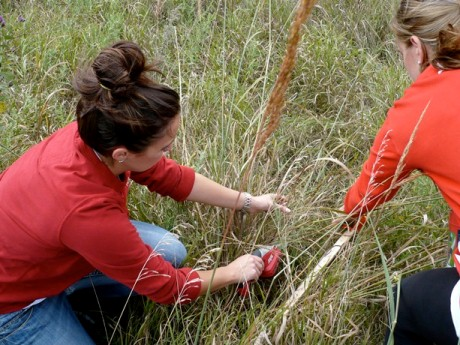 Students collect data at Reller Prairie