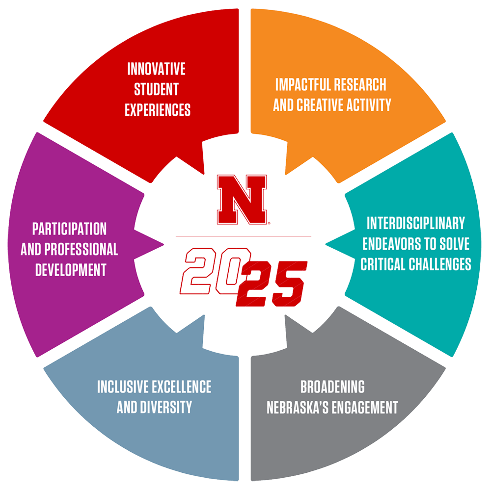 Nebraska Strategic Plan goals pie chart