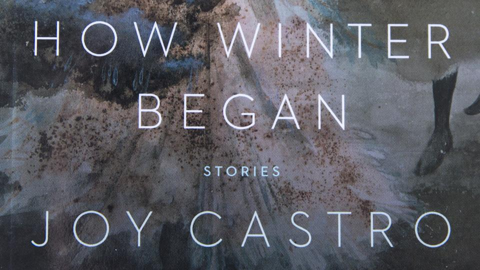 Cover of HOW WINTER BEGAN by Joy Castro; links to news story New Books: Oppressed women featured in Castro's 'How Winter Began'