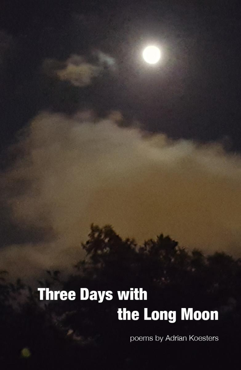 Cover of THREE DAYS WITH THE LONG MOON