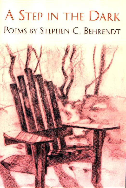 Cover image for A Step in the Dark