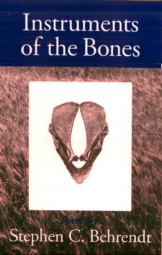Cover image for Instruments of the Bones