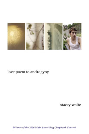 Cover image for Love Poem to Androgyny