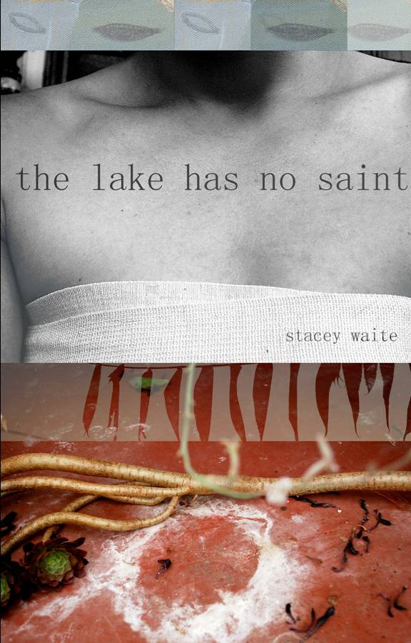 Cover image for the lake has no saint