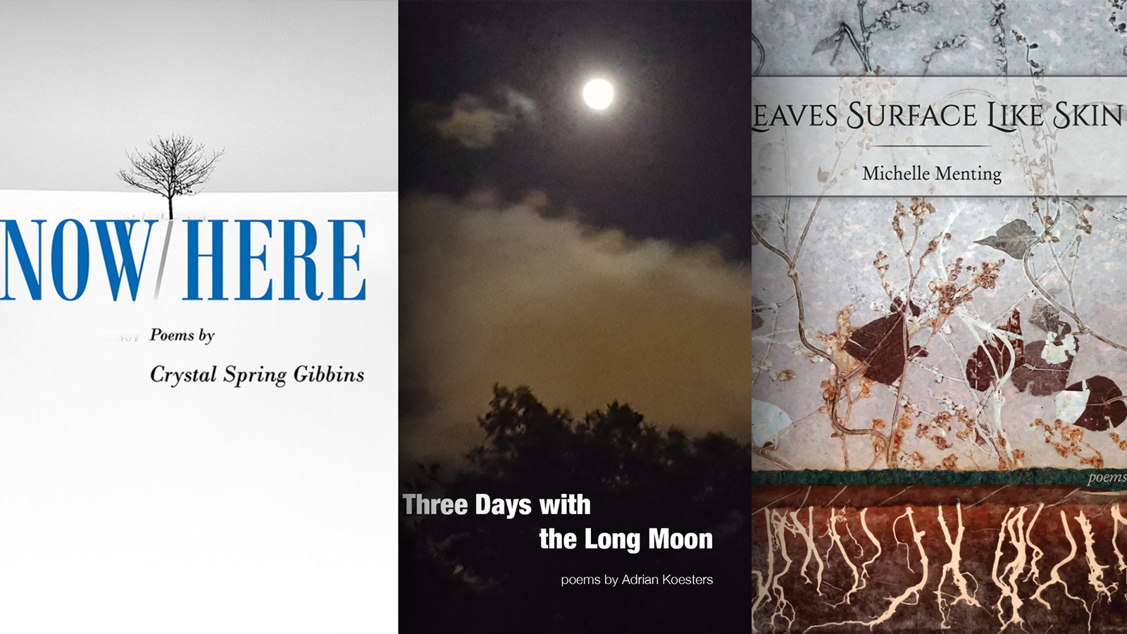 Covers of NowHere, Three Days with the Long Moon, and Leaves Surface Like Skin