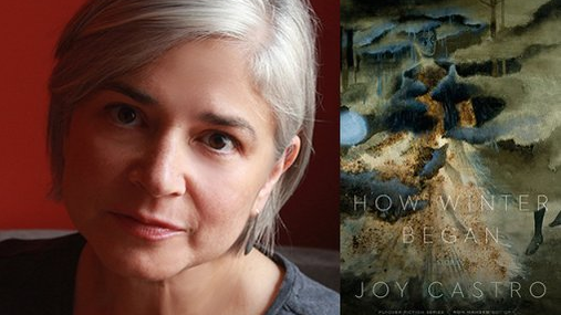 Joy Castro and the cover of her newest collection of stories, HOW WINTER BEGAN