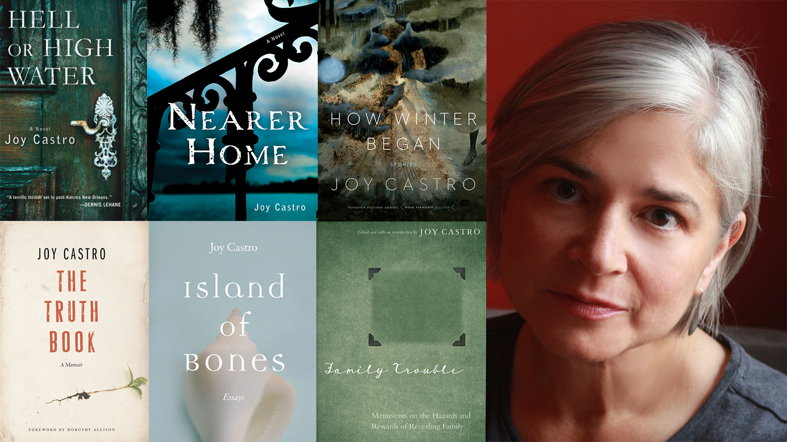 Joy Castro and the covers of her books
