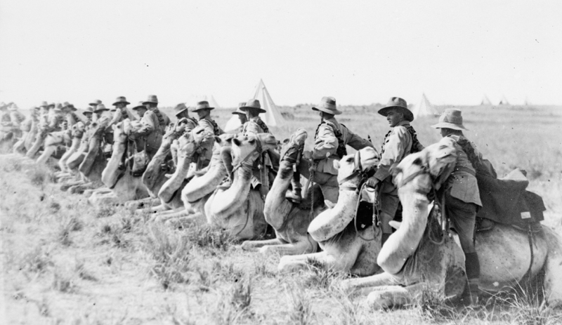 British imperial camel regiment