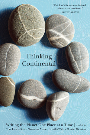 Cover of THINKING CONTINENTAL