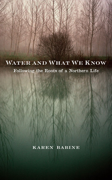 Cover image for Water and What We Know