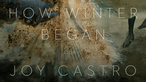 Cover image from How Winter Began by Joy Castro