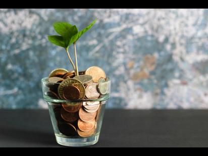 plant growing in money