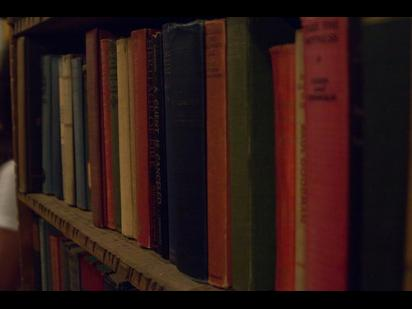 Picture of several books on a library  shelf