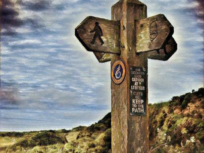 Wooden signpost along a hiking path