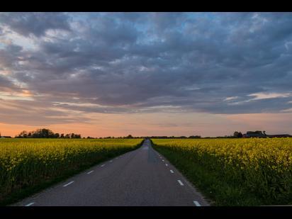 rural road, extending to the horizon