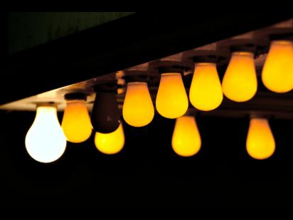 an array of lightbulbs; one is shining brightly amid some others dimmed or burned out