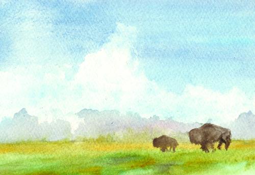 Arthur Short Bull
