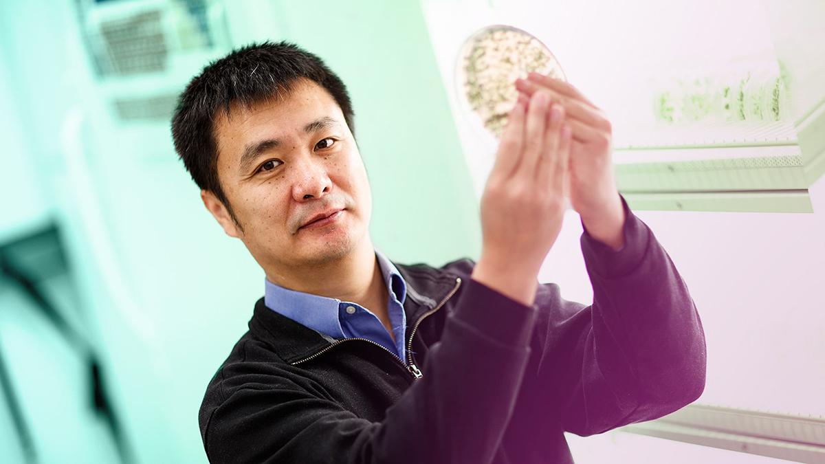 Portrait of Bin Yu