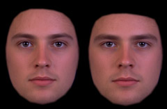 J U V E N T U S: Effects of sexual dimorphism on facial ...
