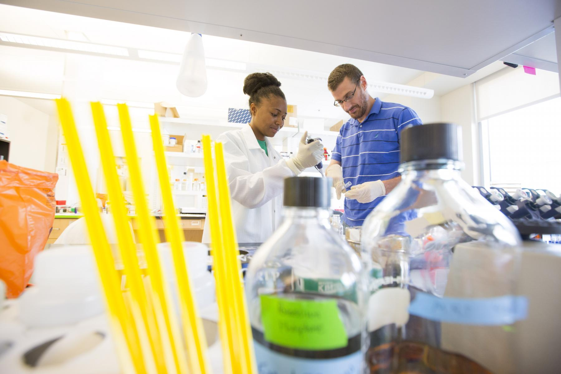 research programs summer research program university of other research opportunities at the university of nebraska